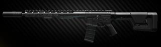 Lone Star TX-15 DML 5.56x45 carbine